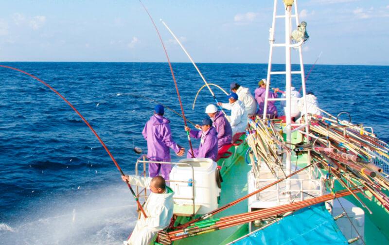 かつおの漁法